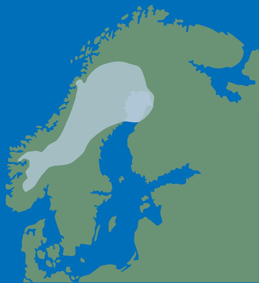 tinder norge Stjørdalshalsen